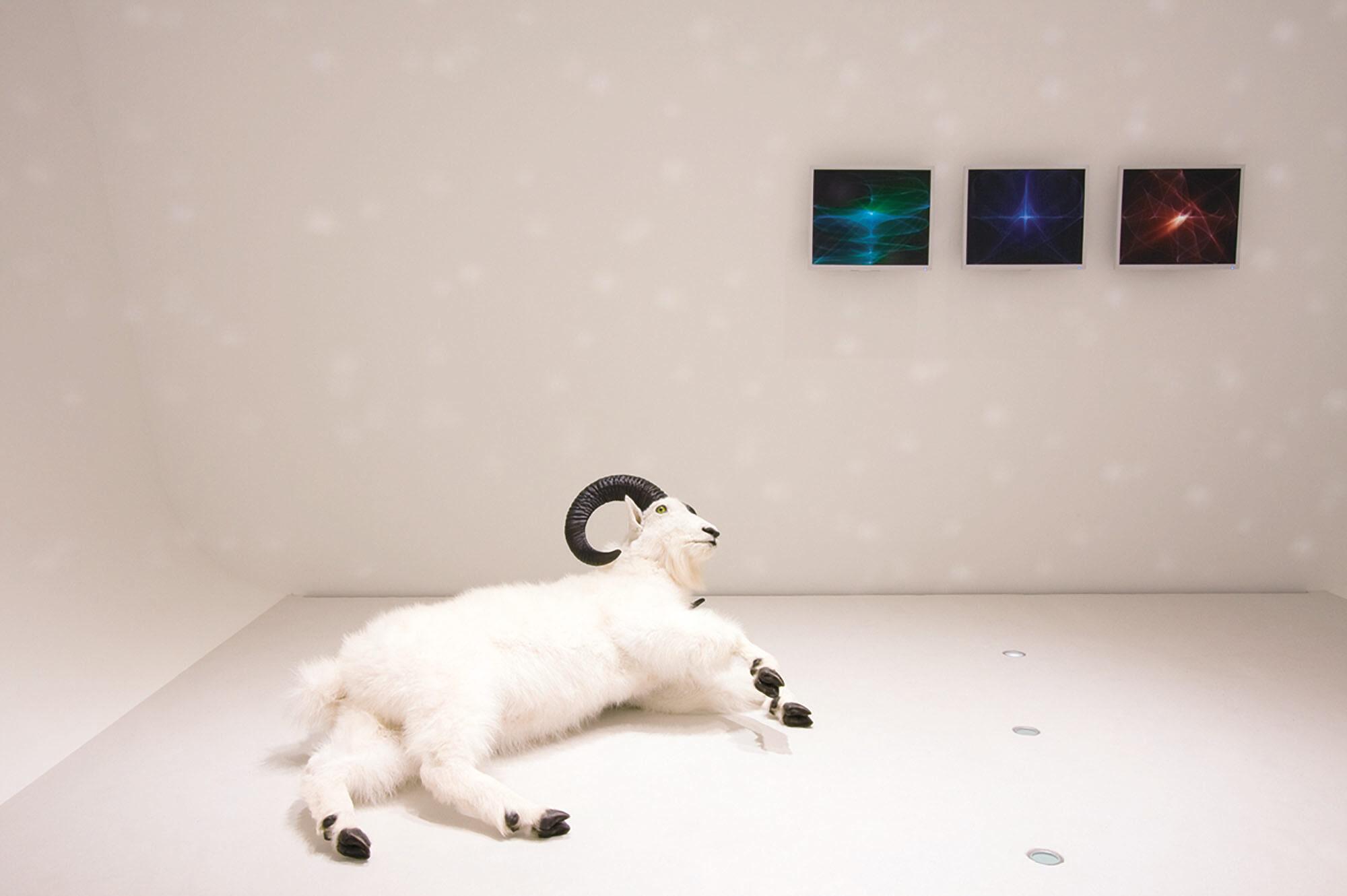 ボッレ・セートレ Dead Snow World System 現代美術 Contemporary Art