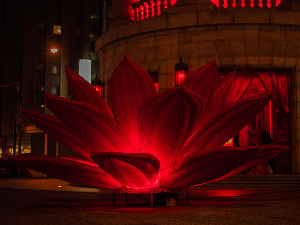 RED ROOM #2 開催風景 現代美術・アート Contemporary Art オフソサエティ offsociety